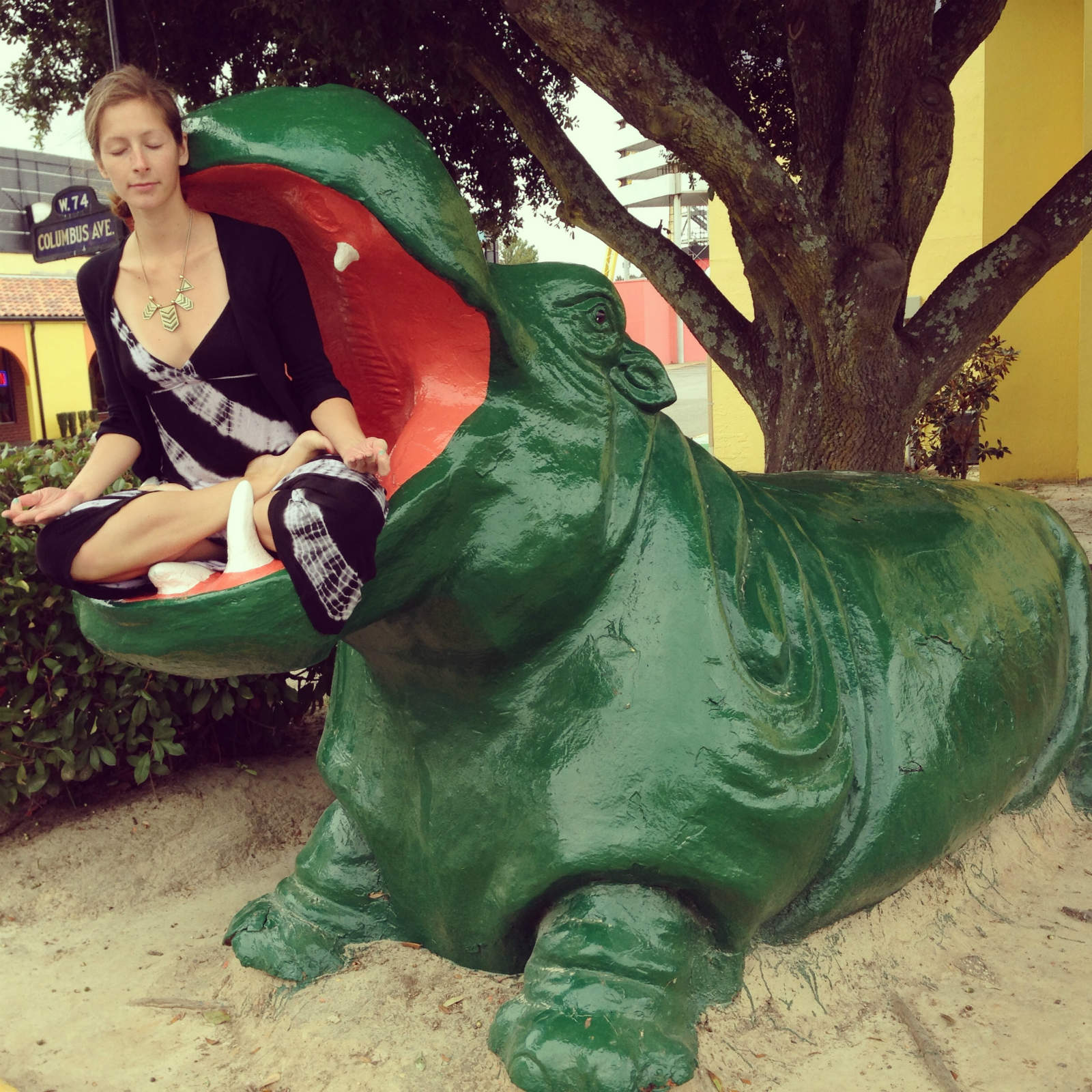 Padmasana (Lotus Pose) in Hippo at South of the Boarder. South Carolina.