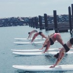 Paddleboard Yoga class Royal Pigeon Yoga Chicago