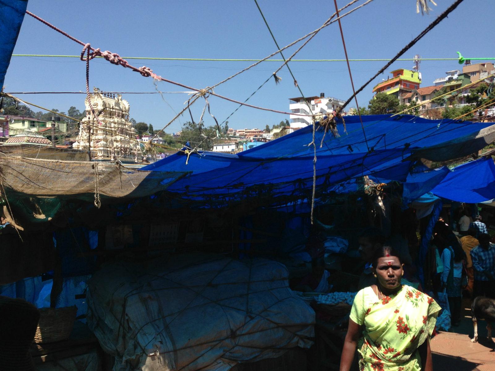 blue tarp market img