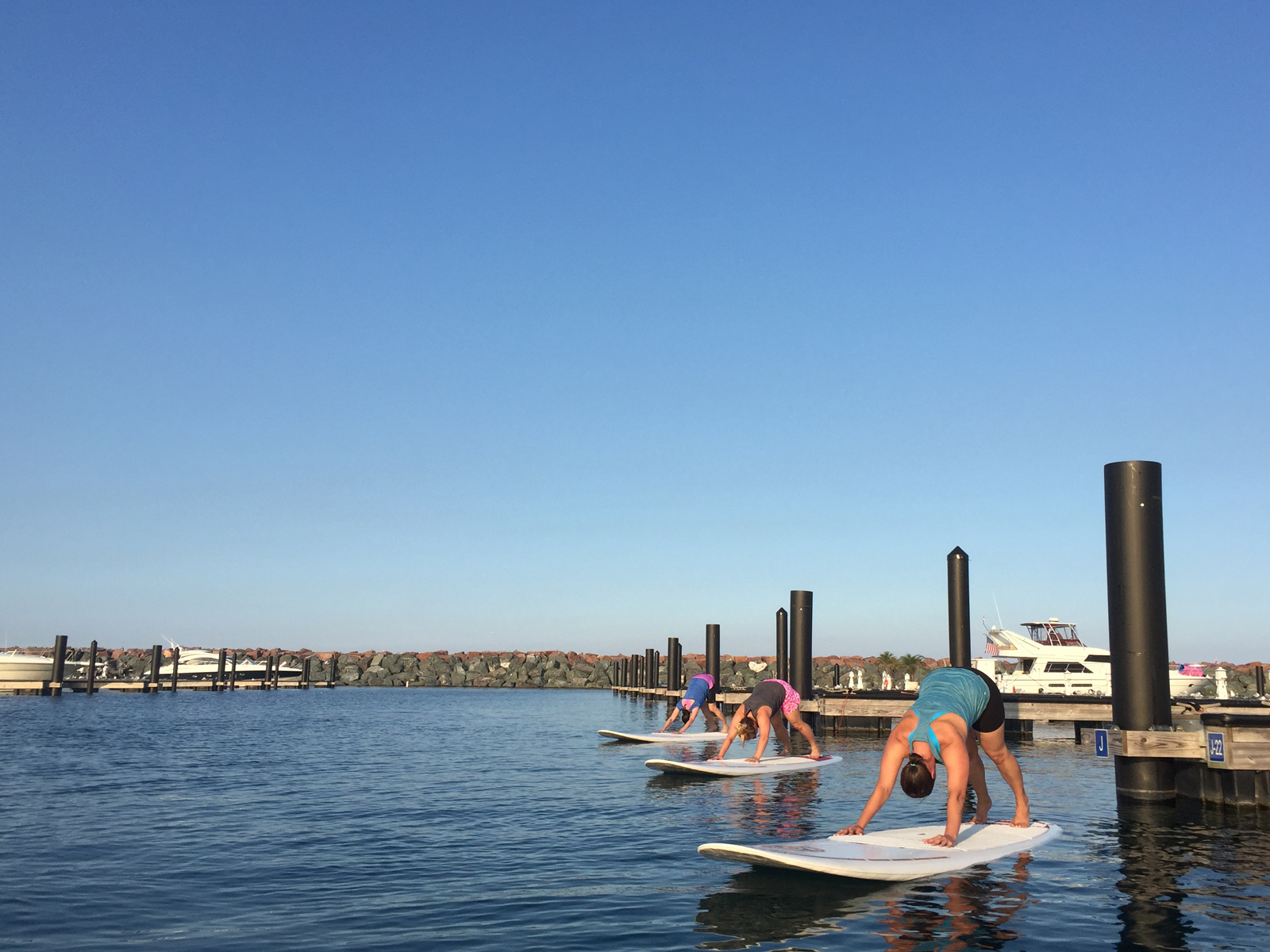 Royal Pigeon Yoga SUP Yoga Chicago