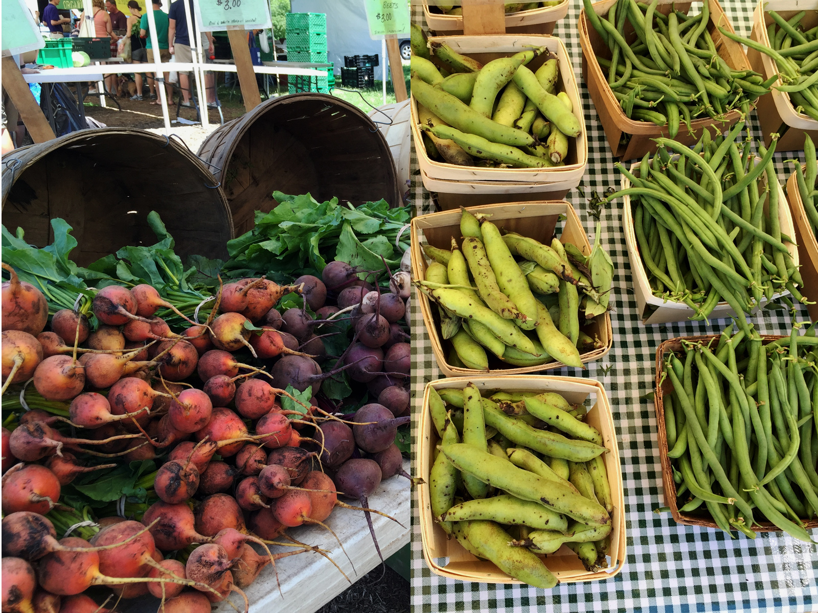 green-city-farmers-market-chicago
